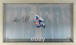 Wayne Gretzky Edmonton Oilers Signed Great From Above Display Upper Deck