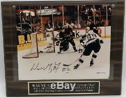 Wayne Gretzky autographed 802nd goal photo plaque Upper Deck COA